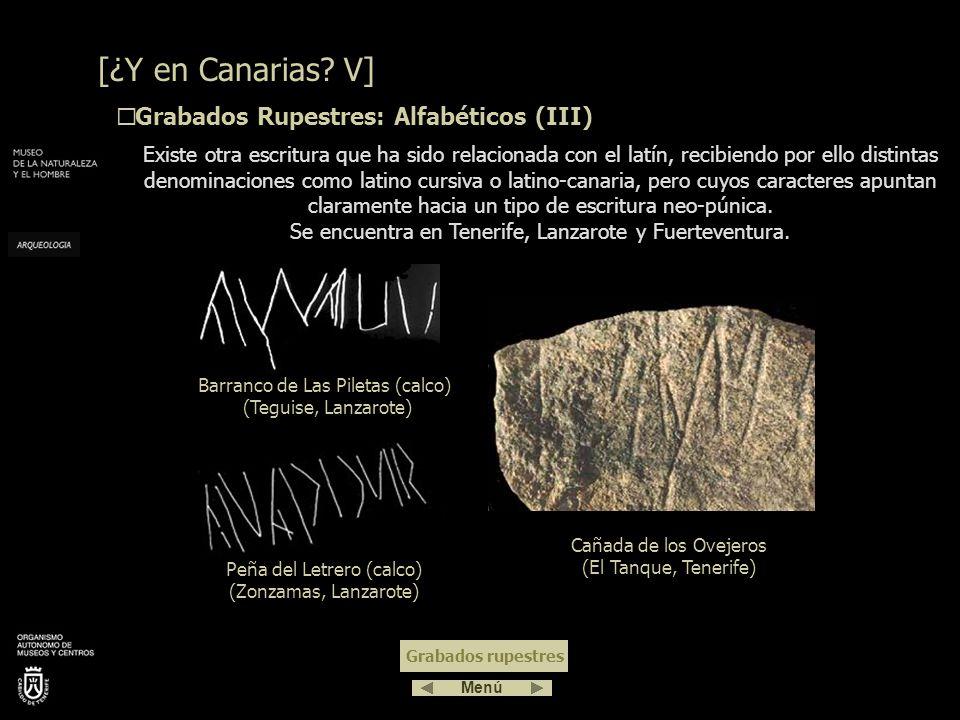 [¿Y en Canarias V] Grabados Rupestres: Alfabéticos (III)
